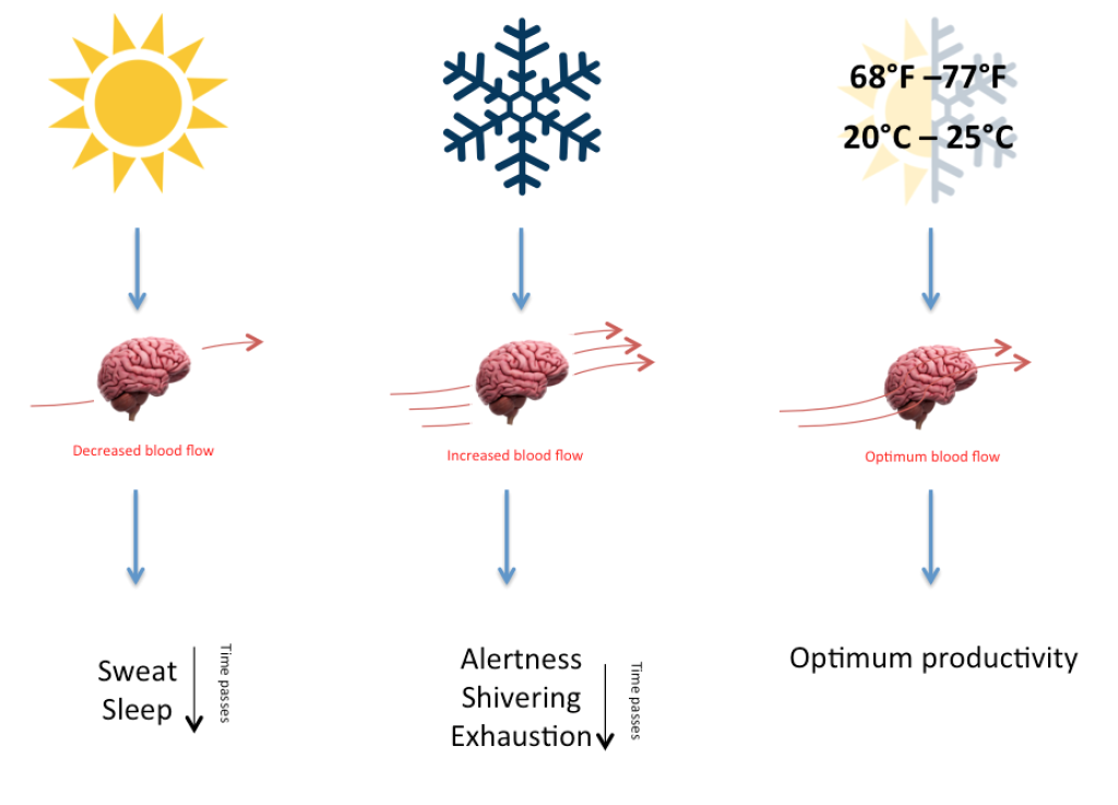 Thermoregulation and productivity